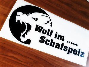 Website für Schafspelz