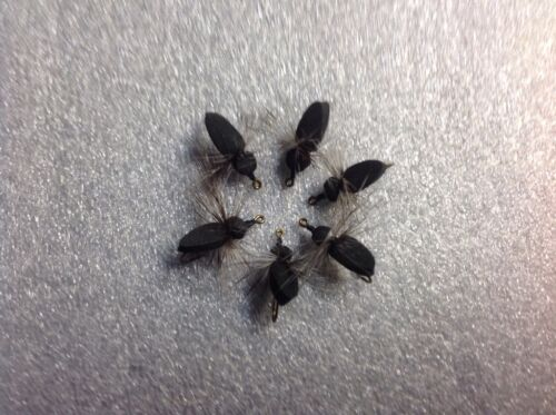 6 Fly fishing  foam black ants spiders flies poppers # 10 hooks panfish Bass