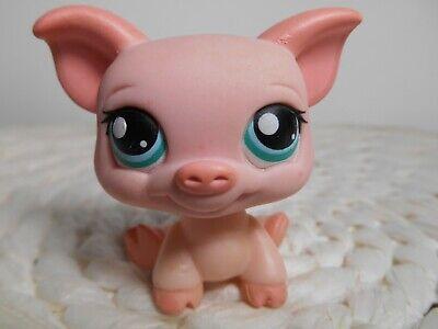 LPS Littlest Pet Shop #361 cochon