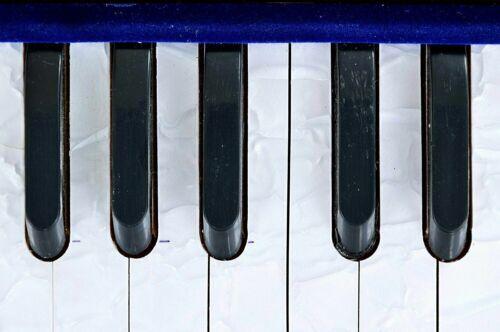 Harmonium 7 Stopper Double Bellow 39 Key 440Hz Long Sustain Sound Best Quality