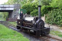 He 0-4-0st Alan George, Henllan Teifi Valley Railway, Dyfed Rail Photo