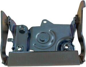 Dorman 90699 Tailgate Handle