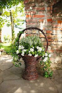 romantischer blumenkorb pflanz korb deko korb fr hling garten hochzeit ebay. Black Bedroom Furniture Sets. Home Design Ideas