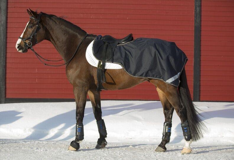 Horseware Amigo 3 in1 concorrenza Impermeabile Riding foglio & Tappeto in Pile Blu scuro oro