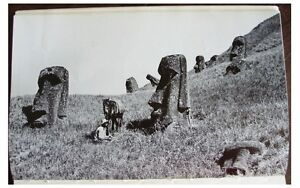 1954-EASTER-ISLAND-RAPA-NUI-GUANO-SLAVES-Preservation-and-Politics-12