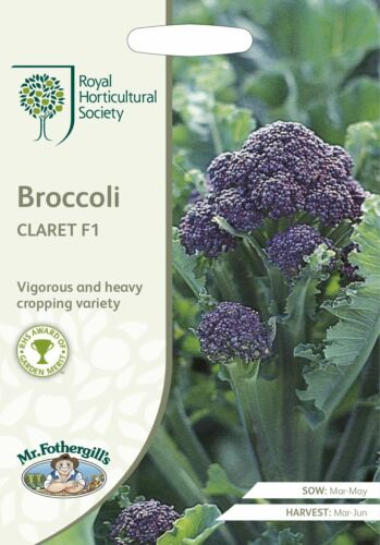 Vegetable Mr Fothergills RHS Broccoli Claret F1-60 Seeds