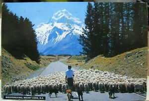 New-Zealand-Sheepdroving-Mount-Cook-posted