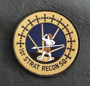 1ST. STRAT RECON SQ.SR-71 BLACKBIRD SKUNK WRKS NASA USAF SQUADRON MILITARY PATCH