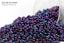 Miyuki Round Rocailles 15//0 Metallic Purple Iris Seed Beads RR-469