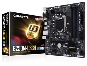 Gigabyte-B250M-DS3H-Intel-Sockel-1151-Motherboard-Offene-Box