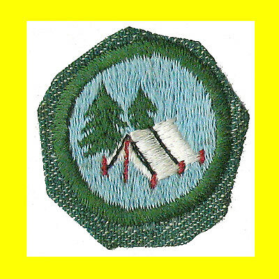 GIRL SCOUT WORLDS TO EXPLORE BADGE GREEN - FREE SHIPPING TROOP CAMPER