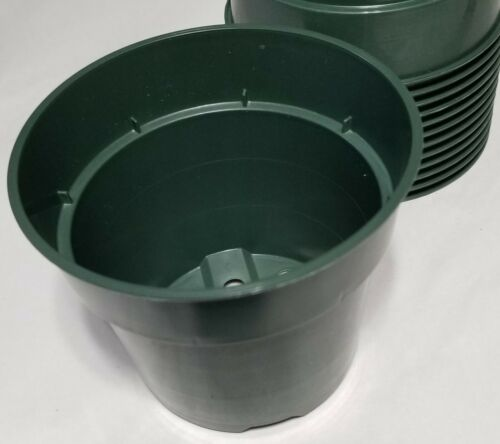 "4.5/"" round x 3.75/"" depth Standard Green Plastic Pot 10 count"