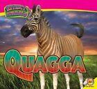 Quagga by Aaron Carr (Hardback, 2015)