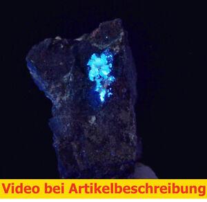 6955-Scheelit-scheelite-ca4-4-3cm-UV-Johanneszeche-Bayern-Deutschland-Film