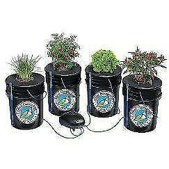 Buy Alfred DWC (Deep Water Culture) 5 Gallon 4-Plant System Kit  Calgary Calgary Alberta Preview