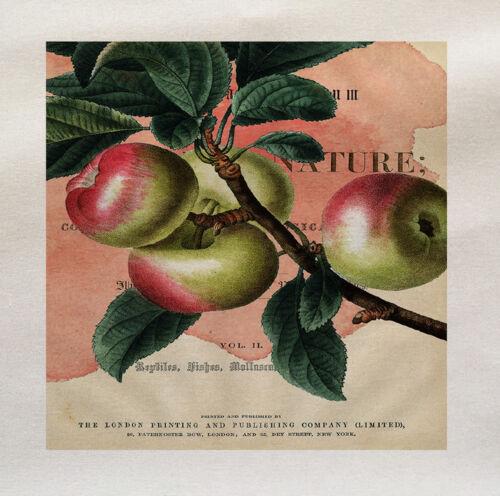 Panel de tela Impreso Otoño manzanas hacer un Cojín De Tapicería Craft