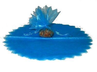 10 Ronds Voile Brillant Turquoise. Diamètre 23 Cm. Colori Fantasiosi