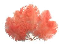 Ostrich Feathers | 1/2 Lb - Apricot Ostrich Tail Wholesale Feathers (bulk) 12-16