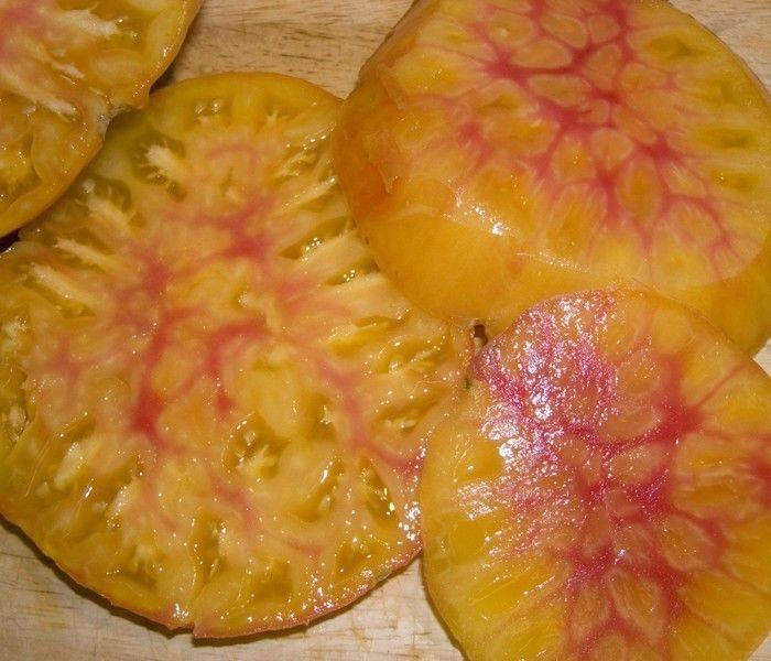 Hawaiian Pineapple Tomato - 5+ seeds - BEAUTIFUL and HUGE!