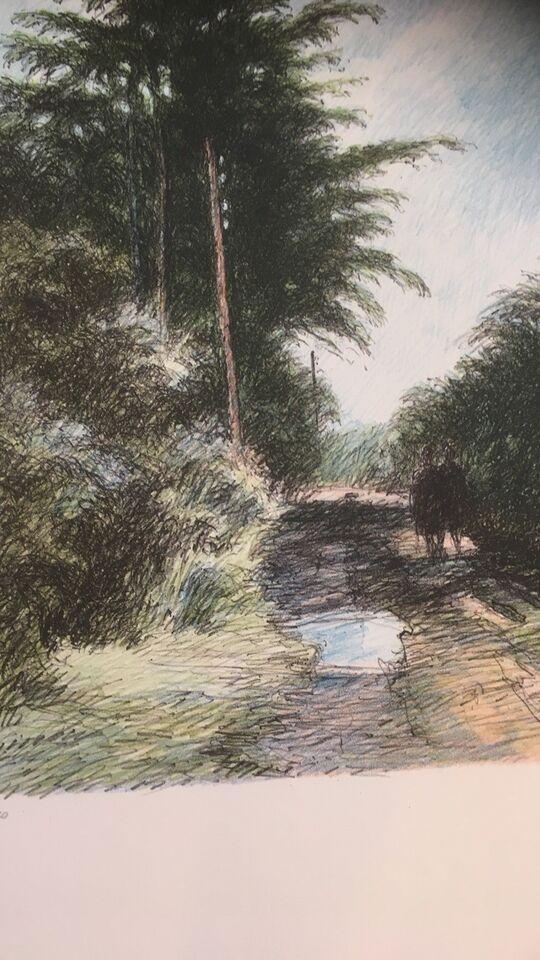 Litografi, Karl V Larsen, motiv: Skov