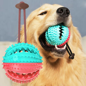 KQ-Pet-Dog-Puppy-Leakage-Food-Ball-Suction-Cup-Squeaky-Molar-Chew-Toy-Sur