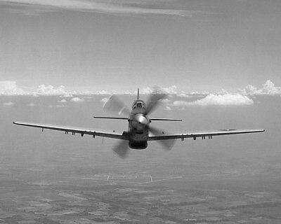 Transport Sammeln & Seltenes Sensible P-51/p-51d Mustang Wwii Flugzeug 8x10 Silber Halogen Fotodruck