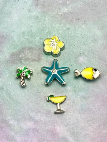 CHARMS sets different themes 5-6 charms started sets.origami owl style.