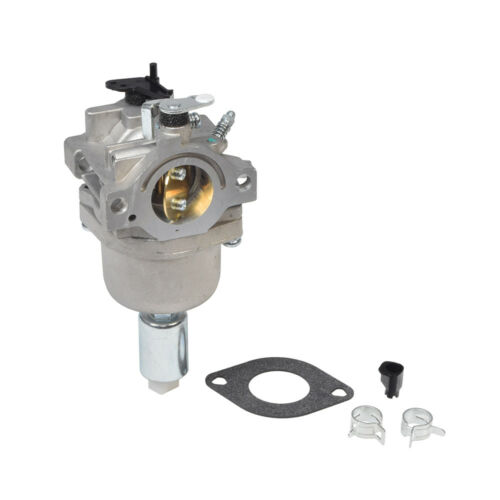 Carburetor 799727 /& 698620 with Gasket for Briggs /& Stratton Engines