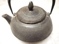 Large Iwachu 480-134 29-Ounce Japanese Iron Hobnail Tetsubin Teapot Black
