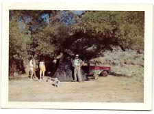 Family Camping at Walker Pass CA Tent-1955 Chevy Wagon-Dalmatian Dog Photo