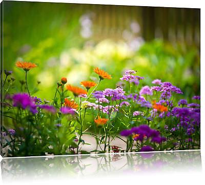 Blumenwiese Wohnzimmer Deko Landschaft Leinwand Bild Wandbild  Kunstdruck 731
