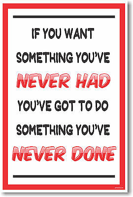 If You Want Something Youve Never Had New Classroom Motivational Poster