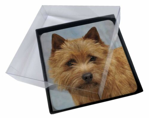 4x NorfolkNorwich Terrier Dog Picture Table Coasters Set in Gift Box, ADNT2C