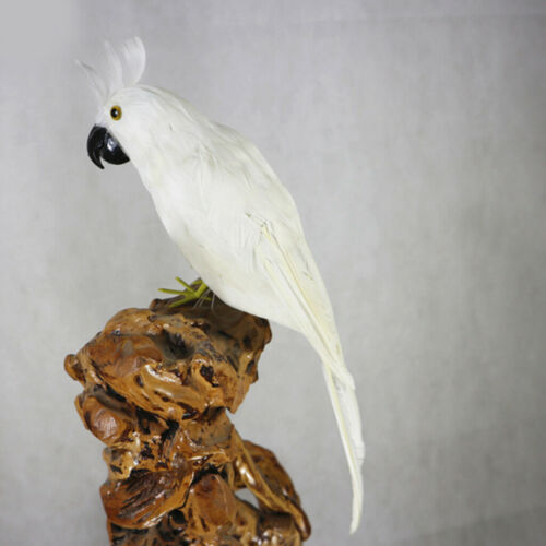 Realistic Foam Parrot Artificial Feathered Bird Animal Decor White Craft