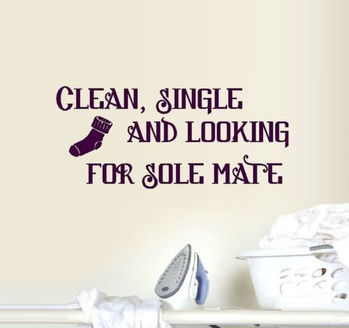 Clean Single and Looking for Sole Mate ~ Wall or Window Decal