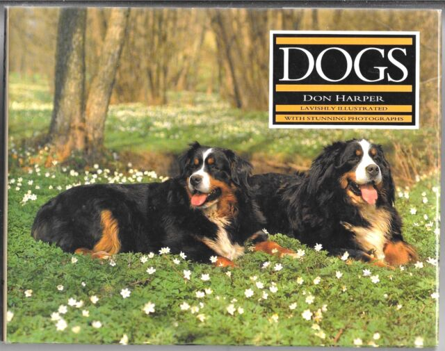 Dogs by Don Harper (1995, Hardcover)