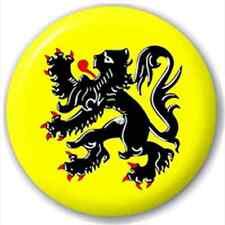 Flanders - Flemish Region Flag 25Mm Pin Button Badge Lapel Pin