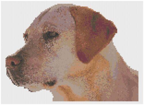 Labrador Retriever Chien Kit point de croix par florashell