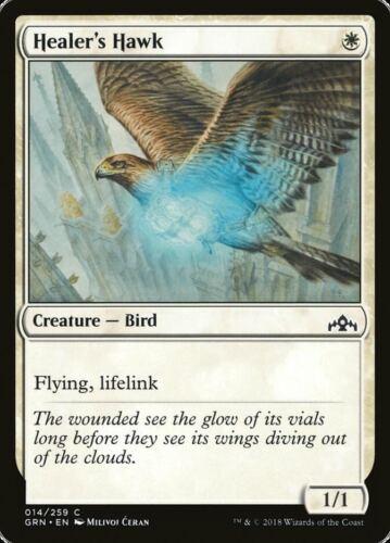 Healer/'s Hawk-Guilds of Ravnica Common en Presque comme neuf