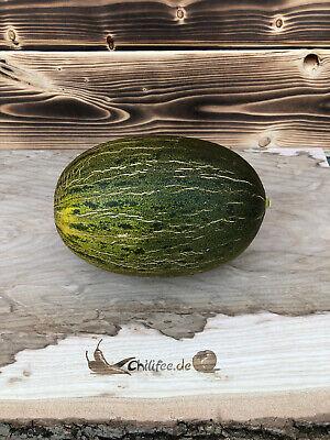 25 Zuckermelone Samen Piel de Sapo Süß Saatgut Melone Gemüse Garten Süß