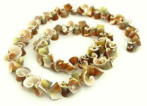 Strombo-Pugile-Piccolo-Spirali-Perline-Perline-Conchiglia-Perle-Naturali-MUAI-3