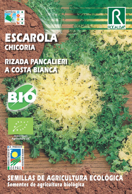 Semillas ECOLOGICAS Escarola Rizada Pancalieri , Sobre 5 gr.