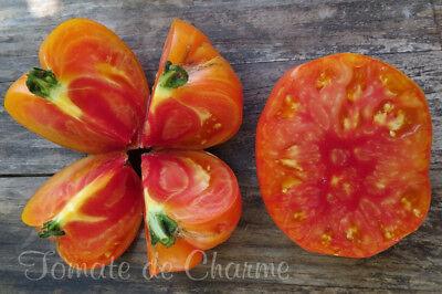 10 Graines De Tomate Bio Rare Armenian étonnante Magnifique Et Délicieuse!