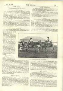 1896-Camels-Start-From-Coolgardie-For-Mount-Darlot