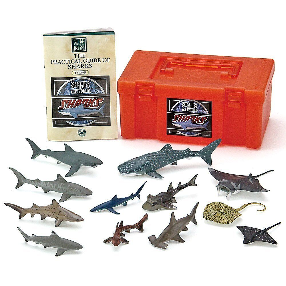 Farbeata 3D Real Figure Box Sharks of the World Action Figure from Japan F/S