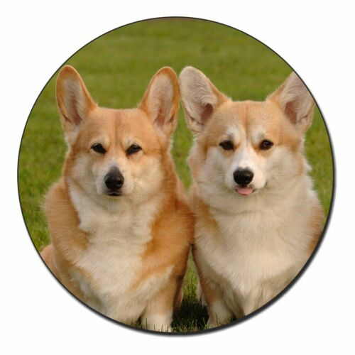 AD-C1FM Pembroke Corgi Dogs Fridge Magnet Stocking Filler Christmas Gift