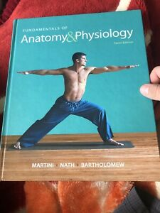 fundamentals of anatomy and physiology martini tenth edition