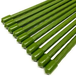 10er-Set-Pflanzstaebe-Rankhilfe-120cm-Pflanzenstaebe-Rankstaebe-Pflanzenstuetze