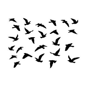 Flock of Birds Stencil