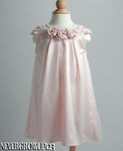 Fancy Holiday Dress